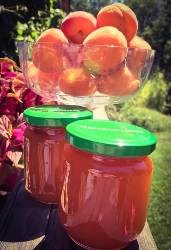 Confiture d'abricots au Thermomix
